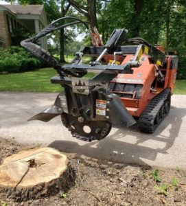conroe tx tree stump grinding